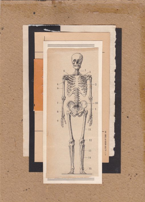 Collage-Skeleton