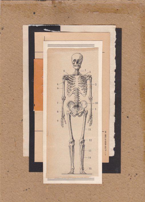 Collage-Skeleton