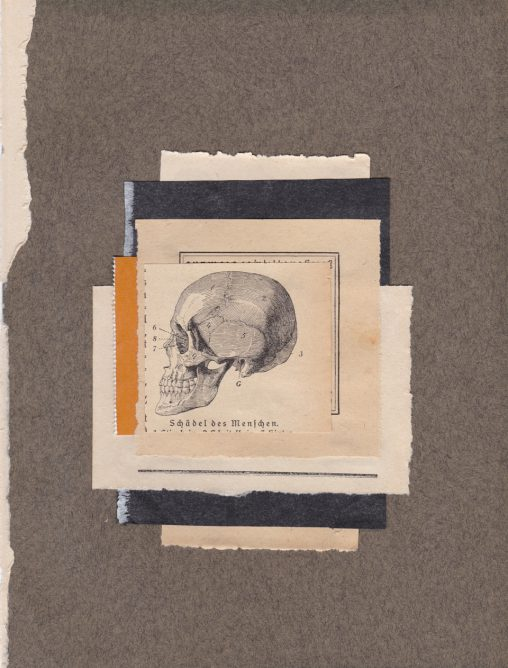 Collage-Skull